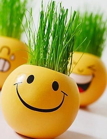 Cincin Gesicht Geschenk Pflanze Buro Mann Puppe Bonsai Gras Haar