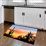 Printed Floor mat Sunny Desert Cactus Picture Wild Nature Sunset High Resolution Photography Digital Printed Wall Home Office
