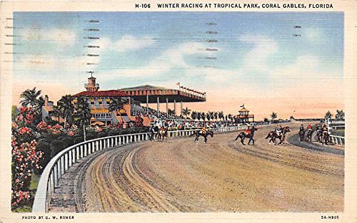 Winter Racing at Tropical Park Coral Gables, Florida, FL, USA Old Vintage Horse Racing Postcard Post - Park Gables Coral