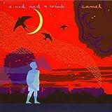 Nod & A Wink by Camel (2007-12-19)