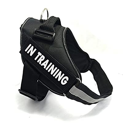 "Fairwin Service Dog Harness, Dog Reflective Vest with ""IN TRAINING"" Patches for Large Medium Small Dogs"