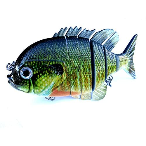 Soljer blue gill sun fish panfish for Blue bass fish