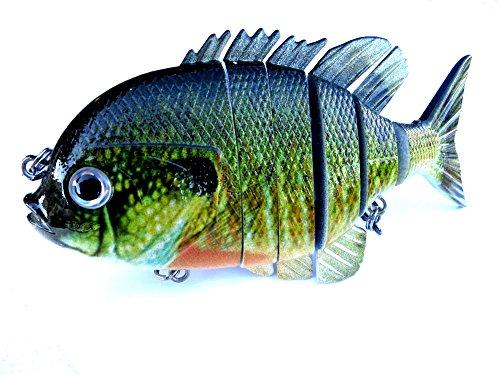 Blue gill sun fish panfish talipia for bass fishing lure for Blue bass fish