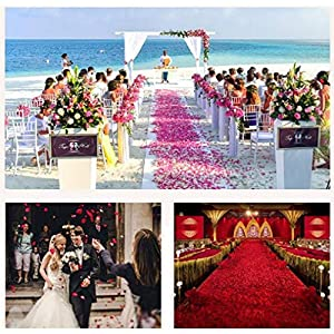 Rose Petals 3000 Pieces Silk Artificial Flower Petals for Wedding Confetti Flower Girl Bridal Shower Hotel Home Party Valentine Day Flower Decoration 66