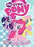 img - for My Little Pony: The Magic Begins book / textbook / text book