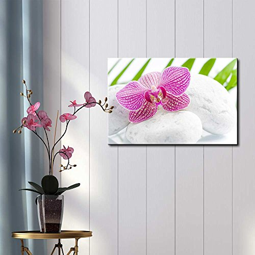 wall26 - Pink Orchid Over Rocks with Palm Leaves on The Background - Canvas Art Home Art - 16x24 inches