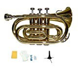 Merano B Flat Gold Brass Pocket Trumpet with