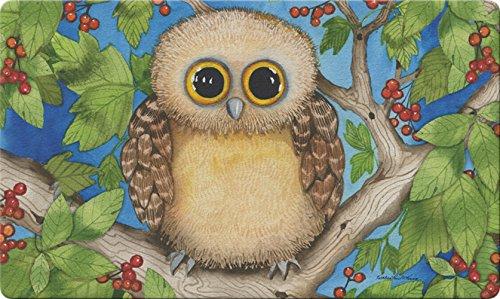 Toland Home Garden Hoot Hoot 18 x 30 Inch Decorative Floor Mat Cute Owl Bird Branch Berries Doormat