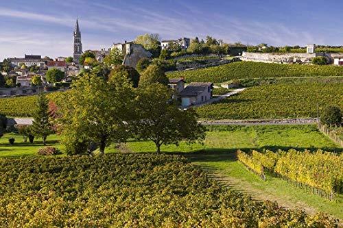 Vineyards, Photography, France, Saint Emilion, Boredelais, Bordeaux, Art print, Wall Art, Decor, Gift, Photo, autumn, church, village, landscape, World Heritage -