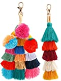 Jetec 2 Pieces Colorful Tassel Charm Keychain Handbags Bag Pendant Key Ring Pom Tassels Key Chain (Multicolor A)