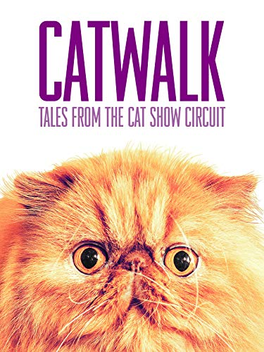 (Catwalk: Tales from the Cat Show Circuit)