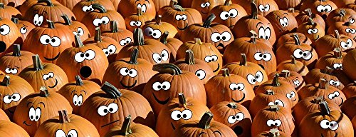 Quality Prints - Laminated 46x17 Vibrant Durable Photo Poster - Halloween Pumpkins Faces Photo Montage Edited Autumn Thanksgiving Decoration Harvest Decorative Autumn Decoration Green White -