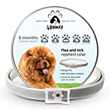 Dog Flea Treatment Collar - 4pawzz Flea and Tick Collar for Dogs, 8 Months Protection, Treatment against Fleas and Ticks, Natural Remedy against Fleas, Flea and Tick Repellent Collar, Allergy-Free Collar against Fleas and Ticks