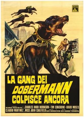 THE GANG TÉLÉCHARGER DOBERMAN