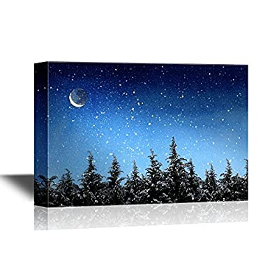 Wonderful Composition, Created Just For You, Beautiful Winter Landscape with Snow Covered Trees at Night