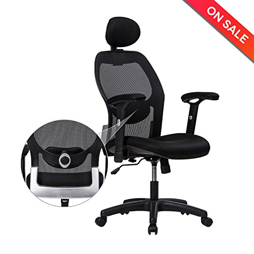 Ergonomic Executive Computer (LONGEM High-Back Mesh Office Chair - Adjustable Back Lumbar Support, Arms and Headrest Ergonomic Computer Desk Task Executive Chair)