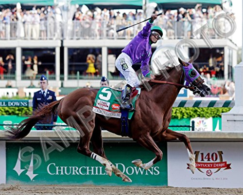 California Chrome 2014 Kentucky Derby Champion Winner Victor Espinoza 16x20 Photo (Kentucky Derby Picture)