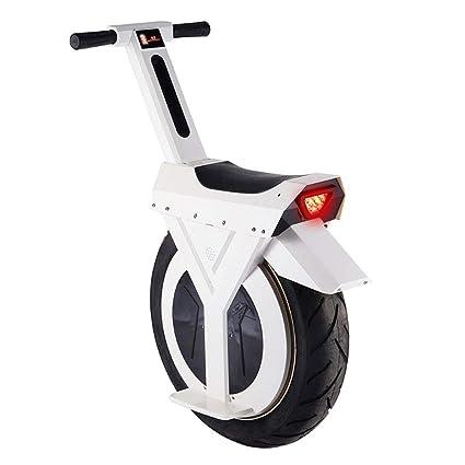 GREATY Monociclo Eléctrico, 500W 17 Pulgadas Sola Rueda Auto ...