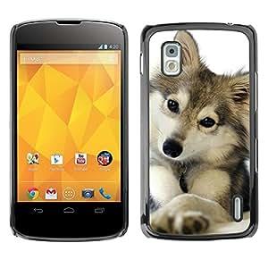 FlareStar Colour Printing Cute Puppy Wolf Snow Winter Pet Canine cáscara Funda Case Caso de plástico para LG Google NEXUS 4 / Mako / E960