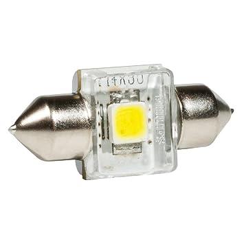Treme Philips Mm Dans Ampoule 4000 V Navette 30 Emballage X Carton Led Vision K Lampe 129404000kx1 De 12 IWY9H2EDeb