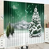 LB Teen Kids Christmas Decor Collection,2 Panels Room Darkening Blackout Curtains,Outside Scenery 3D Effect Print Window Treatment Living Room Bedroom Window Drapes,80W x 63L Inches
