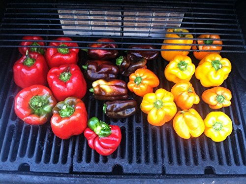 Home Comforts Canvas Print Grilled Grill Food Roasted Pepper Bell Peppers Stretched Canvas 10 x 14