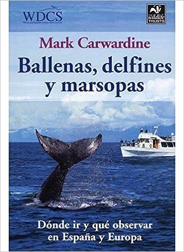 Ballenas Delfines Y Marsopas Mark Carwardine 9788428213608 Amazon Books