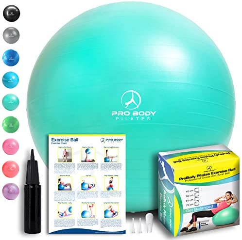 Exercise Ball Professional Anti Burst Stability product image