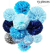 Tissue Paper Flowers Pom Poms Decorations - Bright Colorful Large Rainbow Craft Assorted Bulk Kit Hanging Wall for Big Wedding\ Birthday Party Decor (13 Pack)
