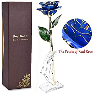 BelivLioner Gold Dipped Rose, 24k Gold Eternity Rose with Transparent Stand Representing Immortal Love,Best Gift for Valentines Day, Mothers Day,Birthday Gift 94