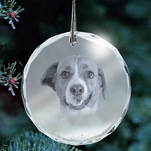 - Goodcount.com Custom Etching Photo Crystal, Laser Engrave Picture in Glass Ornament (XL - 3