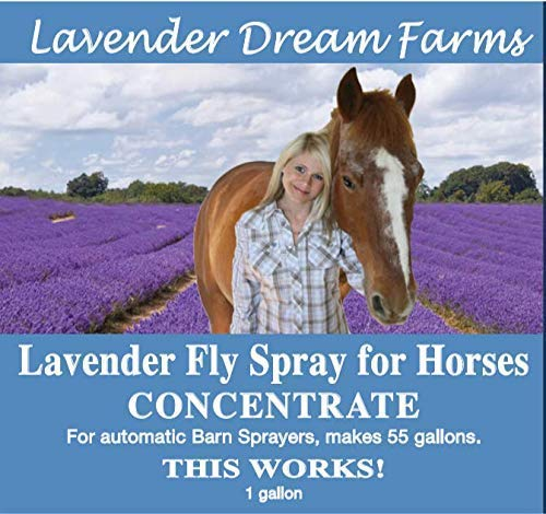 Lavender Flyspray Concentration for Barn sprayers 1 Gallon will make 55 Gallons