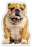 iLeesh English Bulldog Shaped Pillow