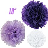 WOM-HOPE® 15 Pack - 10 Inches Tissue Paper Pom Pom Flower Ball Pom-poms - Wedding Party Supplies Decorations Birthday Parties and Baby Showers Party Decorations Party Tissue Pom Poms (Light Purple)