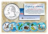 2009 DC & US TERRITORIES Quarters COLORIZED 6-Coin Set STATEHOOD w/Capsules by Merrick Mint
