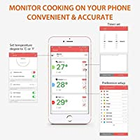 Termometro Carne, Sendowtek Termómetro de Cocina con 2 Sondas ...