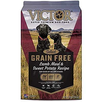 Victor Select - Grain Free Lamb Meal & Sweet Potato Recipe, Dry Dog Food