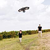 "JEKOSEN 70"" Bald Eagle Huge Kite for Kids and"