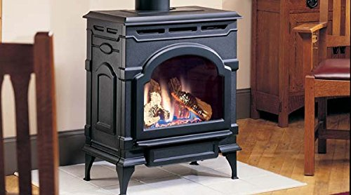 Direct Vent Gas Stove - 9