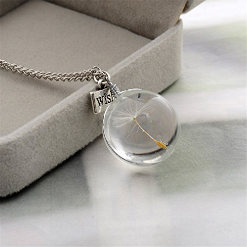 Dolland Handmade Real Dandelion Seed Wish Necklace Dried Pressed Flower Floating Charms Pendant Necklace