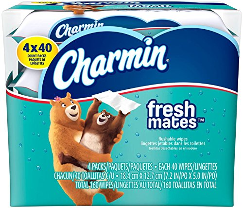 charmin-freshmates-flushable-wipes-160-ct