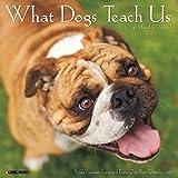 2017 What Dogs Teach Us Mini Wall Calendar