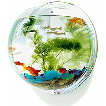Fish bubble wall mounted acrylic fish bowl for Acrylic fish bowl