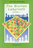 img - for The Sicilian Labyrinth, Vol. 1 (Pergamon Russian Chess Series) book / textbook / text book