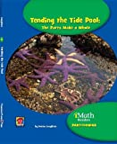 Tending the Tide Pool, Donna Loughran, 1599535556
