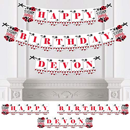 Big Dot of Happiness Personalized Happy Little Ladybug - Custom Birthday Bunting Banner & Decorations - Happy Birthday Custom Name Banner