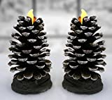 Pinecone Shaped Candles - Set of 2 Flameless Cone Shaped Candle with LED Battery Operated Lights - Pine Cone Decorations