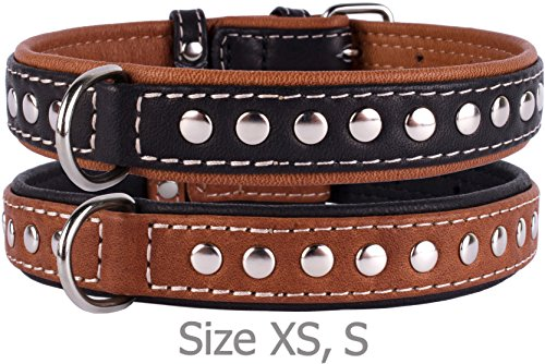 CollarDirect Handmade Studded Dog Collar, Genuine Leather Collar for Dogs, Soft Padded Leather Puppy Collar Brown Black Small Medium (Black, Neck fit 13