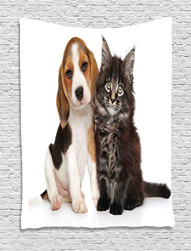 estry, Pet Friends Puppy Kitten Baby Dog Lover Maine Coon Photo, Wall Hanging for Bedroom Living Room Dorm, 60 W X 80 L Inches, Brown Pale Cinnamon and Pale Eggshell ()