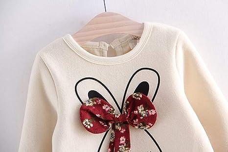 Vestidos niña otoño Invierno, ❤ Amlaiworld Vestidos de Fiesta de Tul de Encaje de Flor de Encaje de bebé niñas Ropa Vestido de Princesa 2 Años - 6 Años: ...